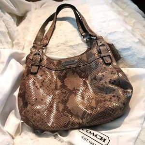 COACH Maddison Maggie Python Embossed Hobo